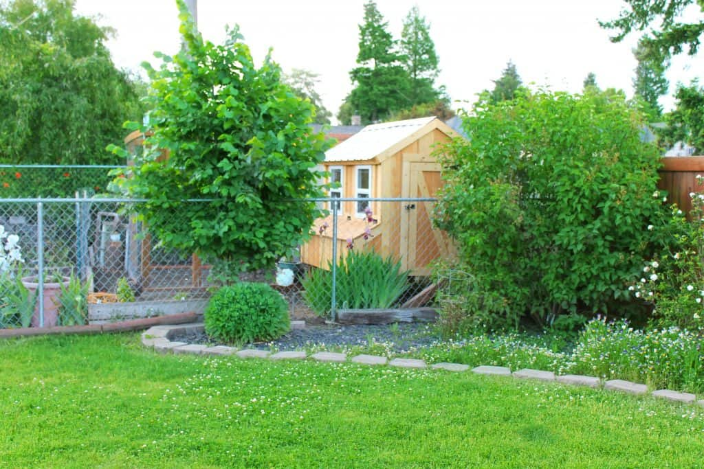 Garden Before & After: New Chicken Coop & Garden Layout