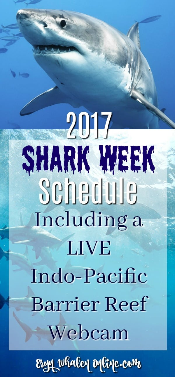 Shark week, shark week 2017, shark party, discovery, great white shark, tiger shark, shark themed party, georgia aquarium, whale shark, shark cam, webcam, sharkcam, shark week schedule, barrier reef,