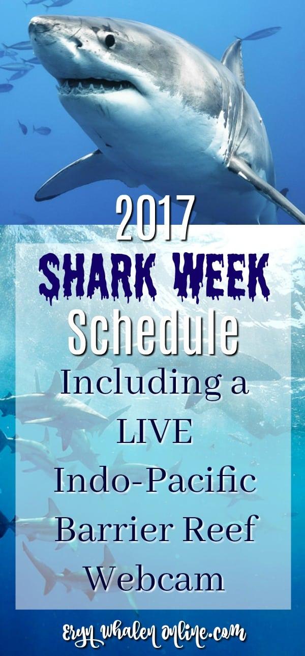 Shark week, shark week 2017, shark party, discovery, great white shark, tiger shark, shark themed party, georgia aquarium, whale shark, shark cam, webcam, sharkcam, shark week schedule, barrier reef,