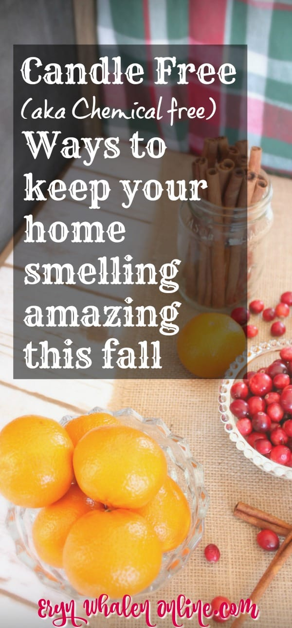 candles, simmer pots, potpourri, fall scents, candle free, make your home smell amazing, fall, autumn, smell good,