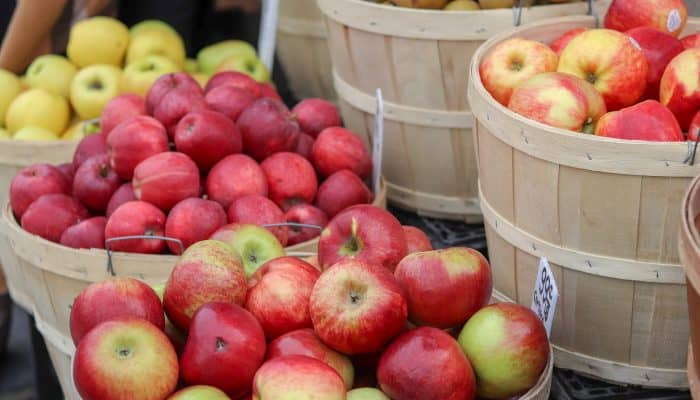 Ideas for canning & preserving apples this fall