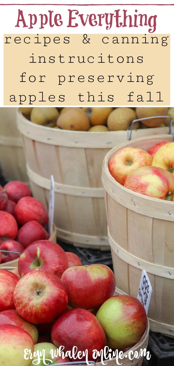 Applesauce and dried apples are excellent ways to keep yummy apple snacks available all winter long for your family. We are huge apple fans in our house, and these are simple ways to keep them readily available all year long! #applesauce #driedapples #applepreserving