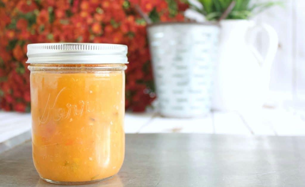 Peach Salsa: Recipe & Water Bath Canning Tutorial