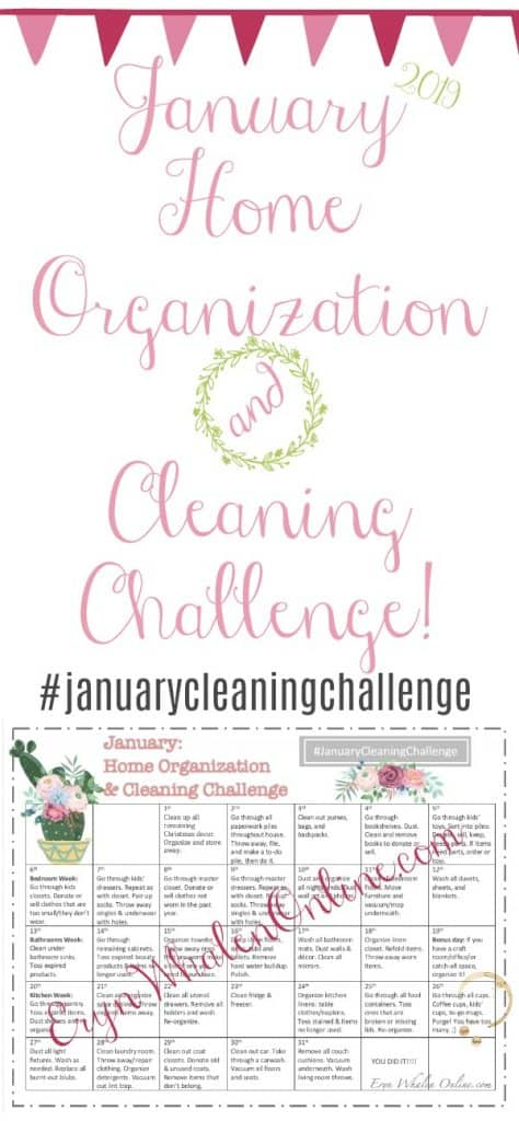 January Cleaning Challenge