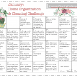 January home organization & cleaning challenge