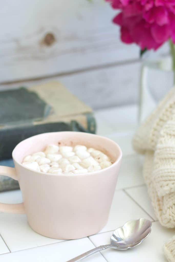 Hot Cocoa Mix: Organic, Home Made, Easy.