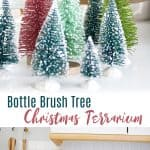 Bottle Brush Christmas Tree Terrarium