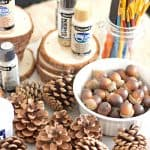 Natural Christmas Ornaments DIY