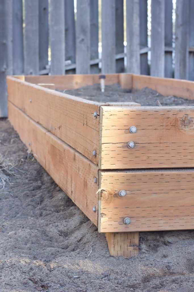 We made raised garden beds last year and the post went viral on Pinterest. I'm here to share how they're doing one year later, and the common questions I receive about the beds. #gardening #gardenbeds #raisedgardens