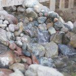 How To Deep Clean A Backyard Pond