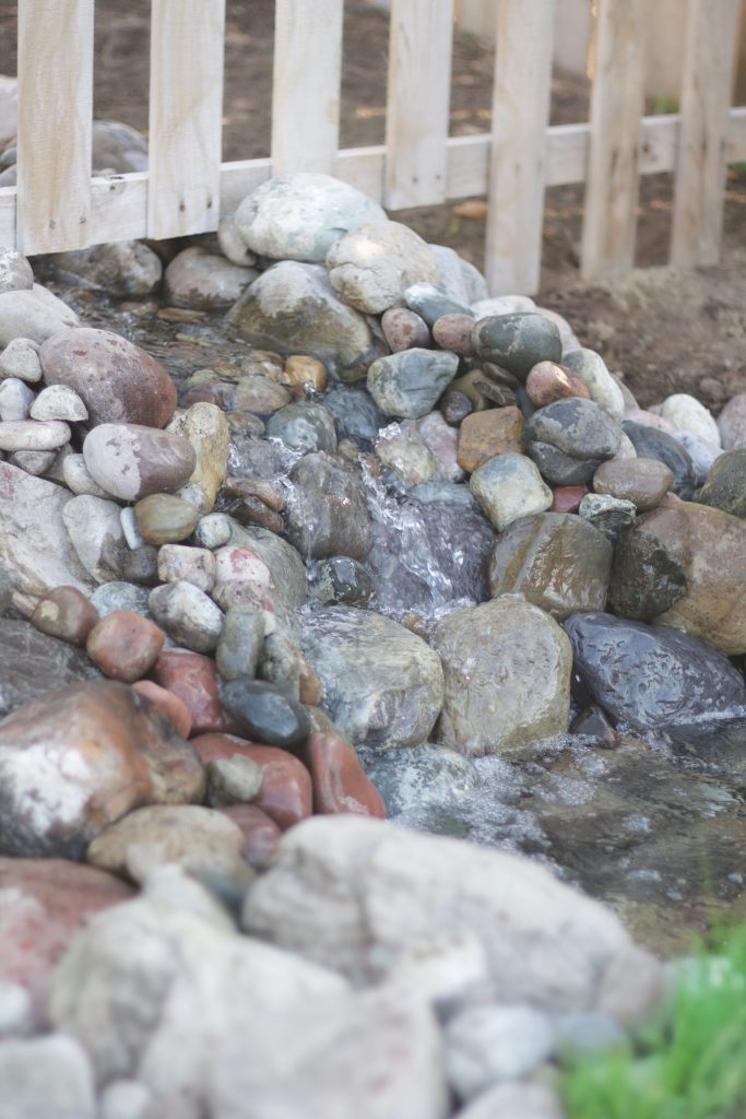How I deep clean my backyard pond! We inherited a backyard pond when we purchased our home, and I had to learn quickly how to clean and maintain it. This is how we do our deep clean a backyard pond once every three years. #backyardpond #smallpond #ponds
