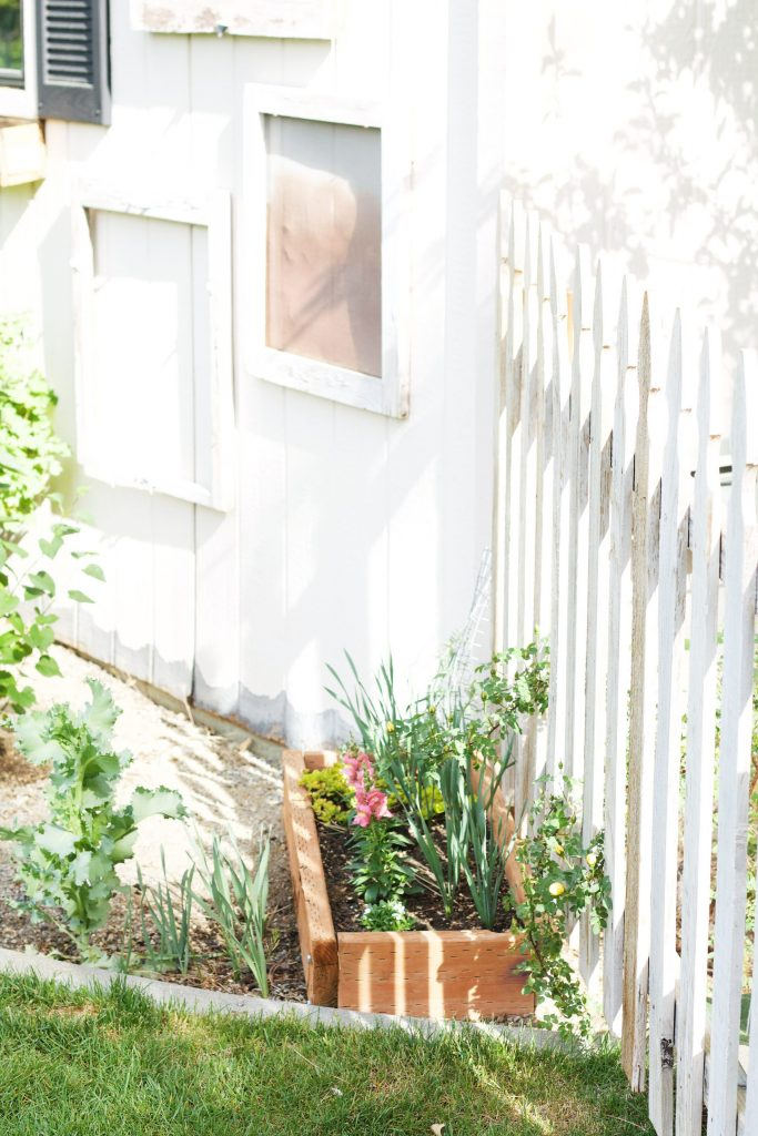 Tips and tricks to maximize your garden space, big or small. Use any garden area to its fullest by implementing these easy tips to grow more. #growmore #gardenspace #gardening