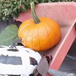 How To Easily Decorate a Fall Front Porch